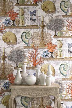 Le Cabinet de Curiosites wallpaper design by Manuel Canovas. Seaside Wallpaper, Wall Wallpaper, Interior Design Advice, Diy Interior, Stunning Wallpapers, Coastal Bedrooms, Modern Tropical, Mural Wall Art, Cottage Design