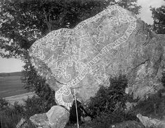 """Sigurd saga rune stone - Sigurd stones - Wikipedia, the free encyclopedia This rune stone seems to tell the story of Sigurd, who has just slain Fafnir and tasted dragon's blood. The blood allows him to hear the birds warning him about Regin, Fafnir's """"serpent-brother"""", who plans to betray Sigurd and take the dragon's hoard for himself. Sigurd, thus warned, slays Regin and takes the treasure of Fafnir, who was changed to a dragon by a cursed ring."""
