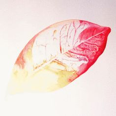 Discover & share this Watercolour GIF with everyone you know. GIPHY is how you search, share, discover, and create GIFs. Trachelospermum Jasminoides, Graphite Drawings, Stickers Online, Botanical Art, Contemporary Paintings, Watercolor Illustration, Painting & Drawing, Animation, Animation Movies