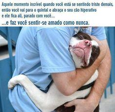 Um cão hiperativo não fica parado, dá-nos carinho até à exaustão. lol ;-) <3