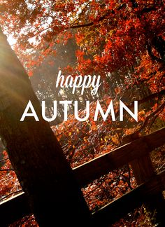Autumn is my favorite time of year! I even memorized the smell of all the fallen leaves!