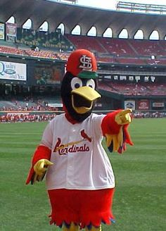 Fredbird in the Old Busch Stadium