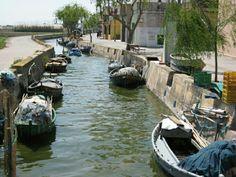 La albufera de Valencia (España)