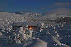 Kuutamoyö & aamun sininen hetki Nammalakurussa
