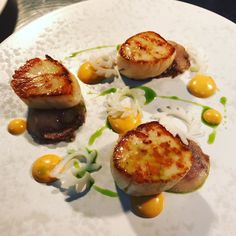 Roast Hand Dived Scallops recipe, Rouille and Pigs Head by professional chef Lorna McNee Chef Recipes, Seafood Recipes, Scallop Recipes, Professional Chef, Best Chef, Avocado Egg, In The Flesh, Scallops