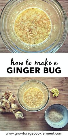 Learn how to make an all natural ginger bug using a wild ferment. It's a very easy beginner fermentation recipe, can be a base for all kinds of homemade soda drinks, including traditional ginger beer. Ginger is one of the easiest foods to ferment, and this recipe is fail proof! Click through to learn everything you need to know about this traditionally fermented starter for homemade natural sodas! #ginger #realfood #gingerbug #fermented #fermentation #traditionalfoods