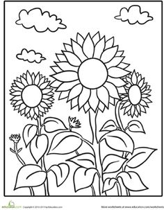 USED 9/18 Pull out your yellow crayon for this nature-themed coloring sheet. It features a trio of blooming sunflowers on a clear spring day.