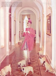 puppies and pink! pugs have never looked so glamorous. Linda Evangelista by Steven Meisel PUGS Linda Evangelista, Steven Meisel, Ellen Von Unwerth, Terry Richardson, Natalie Clifford Barney, Floral Lampshade, Fabric Lampshade, Photo Animaliere, Fu Dog