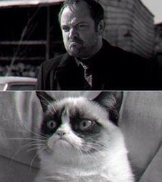 Grumpy Crowley :3