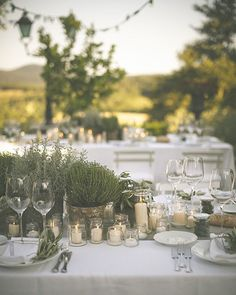 This table! This shot from a wedding we featured on the blog last year, kicked off our editor Claire's entire wedding decor inspiration. Hit the link in the bio to read her top tips for styling your own big day decor. Photo by @divinedayphotography // Styling by @sposiamovi #wedding #inspiration #Italy #Tuscany #realbridediary #herbs #decor #style #linkinbio #bmloves #bridalmusings
