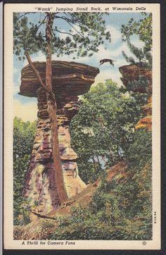 Wisconsin Dells-Stand Rock-Dog Jumping-Vintage Linen Postcard   eBay