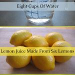 Check out recipes and start the natural process of lose fat without any special effort