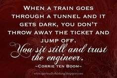 When a train goes through a tunnel and it gets dark, you don't throw away the ticket and jump off. You sit still and trust the engineer.   ~Corrie Ten Boom~