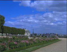 Saint Cloud Park in Paris