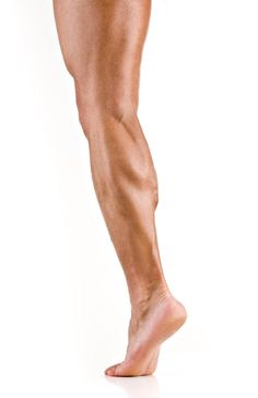 The best way to treat a strained muscle is with the PRICE method: protection, rest, ice, compression, and elevation. Most strained. Leg Reference, Hand Drawing Reference, Human Poses Reference, Pose Reference Photo, Anatomy Reference, Leg Anatomy, Anatomy Poses, Anatomy Art, Human Anatomy