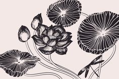 Build your own lotus pond with these hand-drawn lotus flowers, lotus buds, lotus leaves, miscellaneous water plants, and a little dragonfly. These exotic, languorous blooms are reminiscent