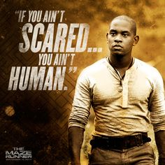The Maze Runner Movie - So excited for this film!!