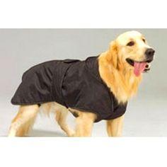 ¿Necesitan realmente los #perros llevar un abrigo o jersey en invierno? #Tipps #Consejos #mascotas