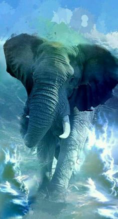 blue elephant - Búsqueda de Google Elephant Love, Elephant Art, Elephant Tattoos, African Elephant, Nature Animals, Animals And Pets, Cute Animals, Elephant Photography, Animal Photography