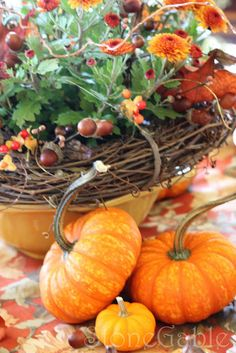 Mum Makeover Magic - add more interest with a grape leaf ring and picks of acorns and berries.