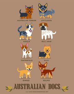 Illustrator Lili Chin's adorable series Dogs of the World