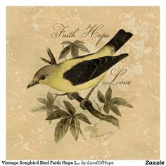 vintage bird prints - Google Search