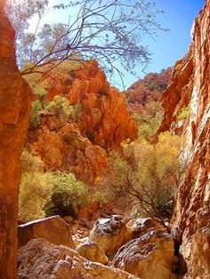 The Outback of Australia. Perth, Brisbane, Melbourne, Moving To Australia, Australia Travel, Tasmania, Beautiful Scenery, Beautiful Places, Magic Memories