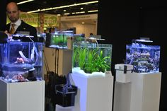 Nano Aquariums: Different Set Up by SICCE Italy