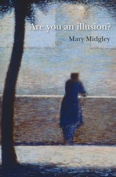 Are You an Illusion? (Heretics) by Mary Midgley https://www.amazon.co.uk/dp/1844657922/ref=cm_sw_r_pi_dp_w2BtxbJVS373F