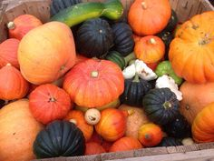 October GardeningOctober Gardening Tips. Late October or November is a good time for mulching in general. While your leaves are great, you can also use compost, bark, straw Tips