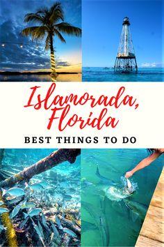 Visit Florida, Florida Vacation, Florida Travel, Florida Keys, Florida Beaches, Vacation Spots, Travel Usa, Vacation Ideas, Key Largo Florida
