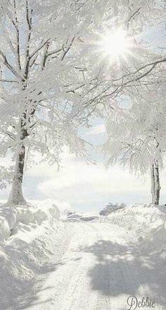 I Love Winter, Winter Light, Winter Snow, Winter Schnee, Especie Animal, Winter Magic, Winter's Tale, Snowy Day, Foto Art