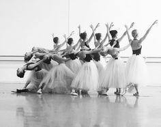 Houston Ballet corps in Serenade    (Source: balletwarrior)
