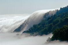 El bosque de la reserva de la biosfera El Triunfo, en Chiapas, es el escenario donde nubes y copas de árboles coquetean oníricamente.