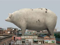 "Chinese artist and photographer Di Liu creates thought-provoking images by superimposing giant animals into urban settings.  ""His work focuses on the conflictual relationship between nature and men, particularly because of the explosion of urbanism in China.""  More creative photography via Ufunk"