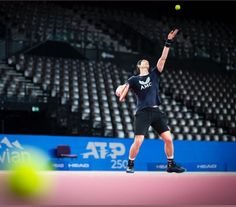 Andy Murray, Basketball Court, Sports, Hs Sports, Sport