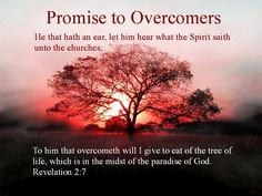 """Revelation 2:7 """"Anyone with ears to hear must listen to the Spirit and…"""