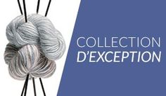 Collection Exception