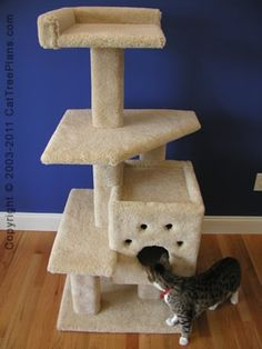 1000 images about diy cat stand on pinterest cat tree for Cat tree blueprints