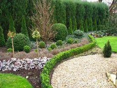 Borówcowy raj - strona 254 - Forum ogrodnicze - Ogrodowisko