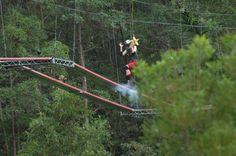 #Dschungelcamp: #Mola und #Larissa in der #Dschungelprüfung #IBES › Stars on TV