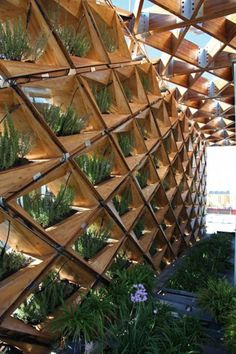 """Sun-Collecting, Parametric """"Skin"""" Surrounds Student-Designed House: At the front, a frame of bamboo and timber delineates a semi-open space that's shielded from the sun and regulates ventilation, while the western side is outfitted with thin film solar cells and a vertical garden. There's even a wetland-mimicking, greywater recovery system under the deck here."""