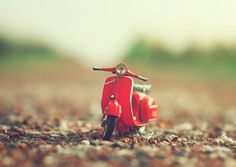 Photograph Want a ride? by Ashraful Arefin on 500px
