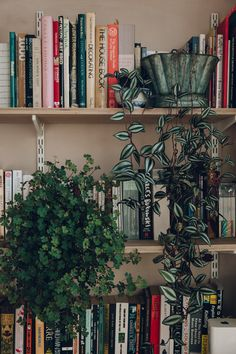 The flat in Hackney, London is pretty small: so owners Catherine Verna Bentley & Louis Hagen Hall had to be clever with storage solutions, custom cabinetry and other design ideas. Decoration Plante, Decoration Table, Bookshelf Styling, Bookshelves, Bookshelf Ideas, Bookshelf Speakers, My New Room, My Room, Hanging Potted Plants