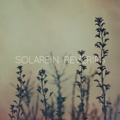 Artist - Solarein Album - Reveries Genre - Shoegaze / Post-Rock