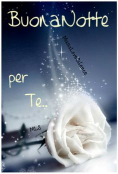 Saraseragmail.com...... Buonanotte questa notte è per te. Buonanotte Buonanotte fiorellino, Buonanotte fra le stelle e la stanza, per sognarti, devo averti vicino, e vicino non è ancora abbastanza. Buonanotte per te! Good Night I Love You, Good Night Wishes, Good Night Sweet Dreams, Good Night Quotes, Good Morning Good Night, Love Moon, Italian Quotes, Good Mood, Love And Light