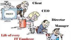 Life of every IT Employee. | Ravneet Kaur | Pulse | LinkedIn
