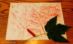 Canada Day Leaf Rubbing - That would be great in the middle of a flag Day Camp Activities, Holiday Activities, Craft Activities For Kids, Crafts For Kids, September Activities, Activity Ideas, Toddler Activities, Learning Activities, Daycare Crafts