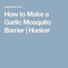 How to Make a Garlic Mosquito Barrier | Hunker