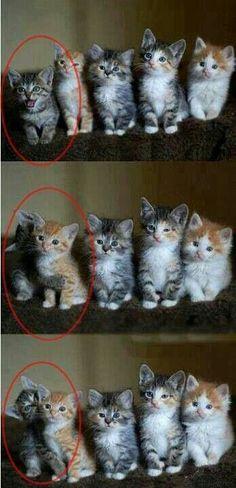 One lovable little trouble maker! :)
